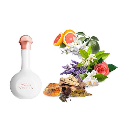 آی پرفومی آنونزیو آکوا نون تیا | فروشگاه اینترنتی عطرونک - مرجع خرید عطر، ادکلن، لوازم آرایشی و اکسسوری